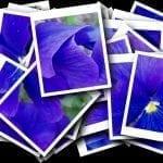 Бесплатный ресурс фотографий (для блога, сайта, печати)