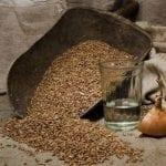 Рецепты самогона из пшеницы в домашних условиях, секреты выбора