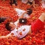 Самфелио: битые томаты подняли доходность туризма на достойную высоту