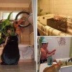 Необычные и оригинальные способы использования ванной комнаты!