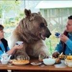 Медведь Степан 23 года живет в российской семье