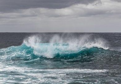 Гидробиологи из США обнаружили бактерии на дне океана глубиной в 4,5 километров